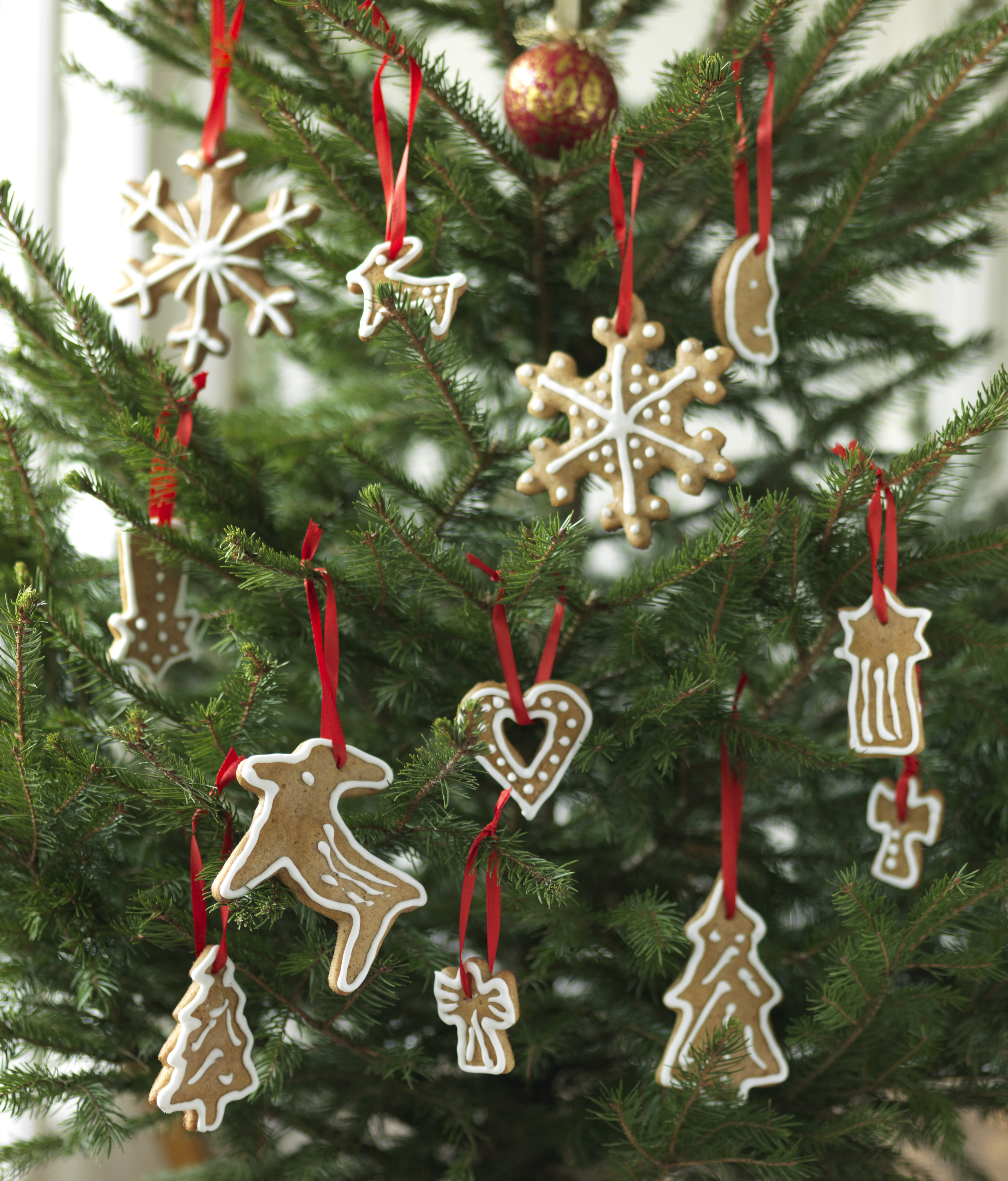 Lebkuchen fur den weihnachtsbaum